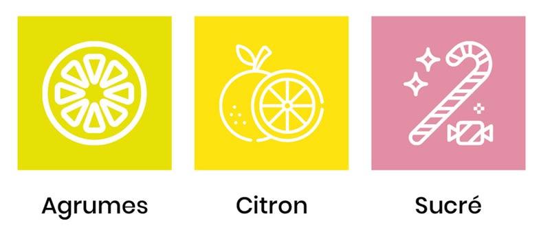 saveurs-nina-limone-cbd