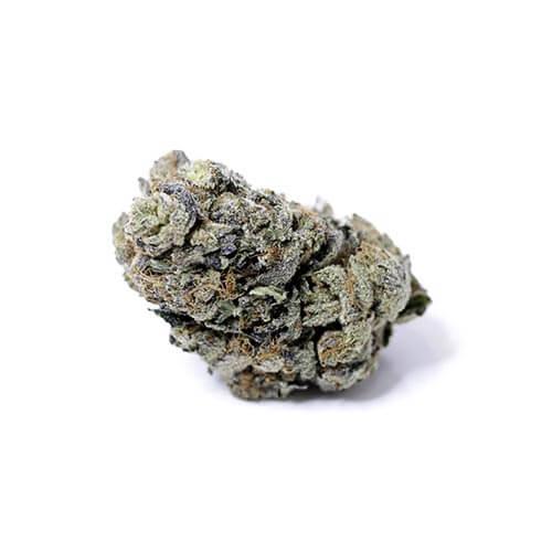 grossiste-cbd-cannabis-grossiste-legal-whiterussian
