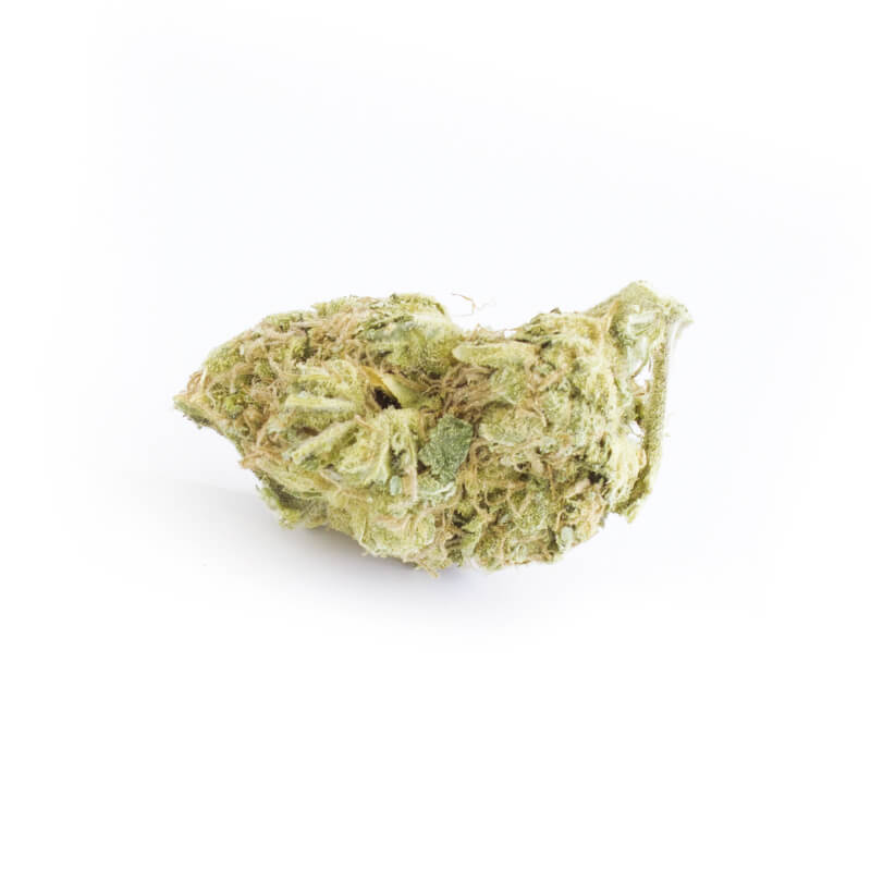mojito-cbd-legal-en-gros-belgique-2behemp