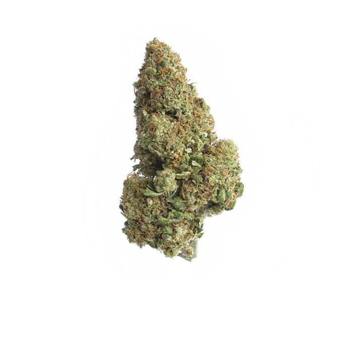 2behemp-cbd-cannabis-grossiste-whitewidow