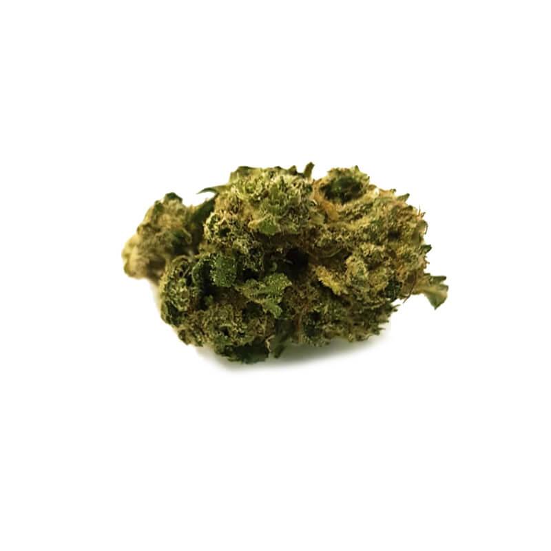 Dioica-cbd-cannabis-legal-2BeHemp
