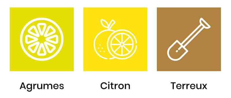 saveurs-lemon-kush