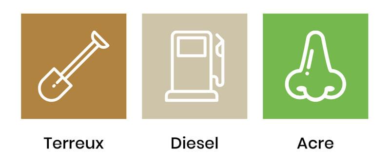 saveurs-sour-diesel