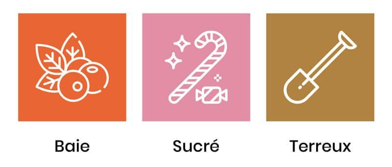 saveurs-sugar-cookies
