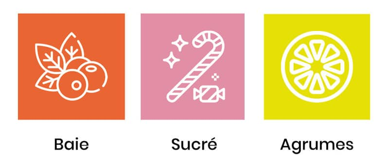 saveurs-fruity-pie